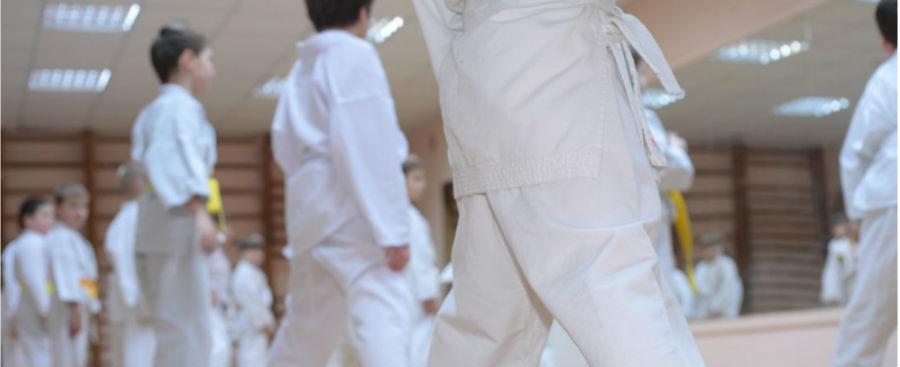 Why Adding A Kids Martial Arts Program To Your Fitness Studio Make Sense